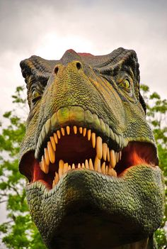 Wear the king of them all this Halloween. These are scary T-Rex costumes! Arte Audrey Hepburn, T Rex Costume, Walking With Dinosaurs, Dinosaur Wallpaper, Outdoor Halloween, Halloween Ideas, Dinosaur Images, Chester Zoo, Jurassic Park World