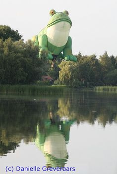frog hot air #balloon! http://www.roanokemyhomesweethome.com