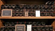 2014 Barolo: Surprise, Surprise ... (février 2018) | Vinous - Explorez tout le vin Surprise Surprise, Wine Rack, All Things, Coffee, Drinks, Storage, Home Decor, Wine, Kaffee