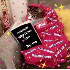Funny Couple Memes I LOVE YOU in 100 different languages Necklace Best gift for your loved ones Memes Amor, Dankest Memes, Funny Memes, Hilarious, Cute Cat Memes, Cute Love Memes, Sapo Meme, Heart Meme, Wholesome Memes