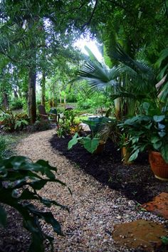 tropical garden inspiration.  It looks so cool in there!