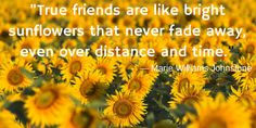 No description the sunflower quote, true friends are like bright sunflowers dean w knight. True friends are like bright sunflowers that never fad, Bff Quotes, Best Friend Quotes, Photo Quotes, Cute Quotes, Wall Quotes, Friendship Quotes, Sunflower Quotes, Sunflower Pictures, Friends Are Like