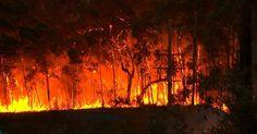 Brasil já teve 53 mil queimadas em 2016; alta de 65% é motivo de alarme