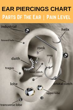 Ear Piercings Chart – Ear Piercings for Men and Women – PositiveFox.com