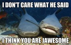 Shark Humor. Fin-tastic.