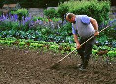 Que faire en juin au jardin ?