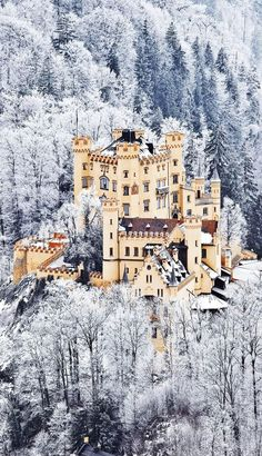 The Scenic Castle of Hohenschwangau in Germany. Bavaria | The 20 Most Stunning Fairytale Castles in Winter