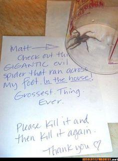 Please kill it then kill it again.