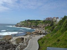 Bondi coastal walk - one of my fave walks  to get a good workout and also see amazing view - go in late October and catch 'Sculpture by the Sea' open air exhibition