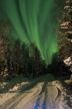Photo taken 14.10.14 in my home road in Ruka, Lapland. They were the best Northern Lights in this autumn