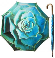 Umbrella: Rock Rose Green | Floral | The Perfect Day