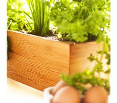 wooden-herb-garden-for-kitchen-or-sill