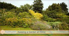 Keeping a Garden at Home