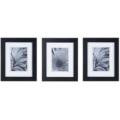 Mikasa® Set of 3 5 x 7 Black Wood Frames ($30) ❤ liked on Polyvore featuring home, home decor, frames, black frames, wooden picture frames, wood frames, black picture frames and black home decor