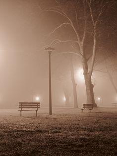 Bishop Park  Wyandotte, MI  fog