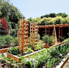 Most beautiful vegetable gardens 23 backyard овощной огород, Vegetable Planters, Vertical Vegetable Gardens, Vegetable Garden Planner, Vegetable Garden For Beginners, Backyard Vegetable Gardens, Vegetable Garden Design, Fruit Garden, Vegetables Garden, Tall Planters