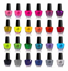 SHANY Cosmetics The Cosmopolitan Nail Polish Set (24 Colors Premium Quality and Quick Dry), 40 Fluid Ounce | Your #1 Source for Beauty Products