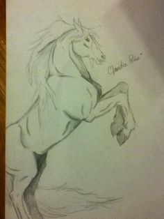 horse drawings in pencil | Rearing Horse Pencil Sketch by OohFireworks