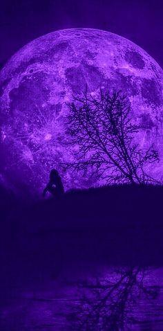 Dark Purple Wallpaper, Bullet Journel, Purple Themes, Gerbil, Purple Aesthetic, Shades Of Purple, Wall Collage, Scenery, Moon