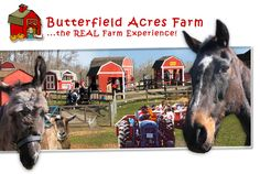 Welcome to Butterfield Acres Farm Website Book Birthday Parties, Farm Unit, Farm Kids, Pony Rides, Petting Zoo, Relaxing Places, Farm Theme, Parking Lot, Zoo Animals