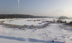 #ice#eis#landschaft#landscape#heimat#Germany #deutscherwald #deutschland #forest#snow#schnee#see#lake#frost#dream#Elsa#snowwhite http://misstagram.com/ipost/1548122969984147568/?code=BV8CaOOhyBw
