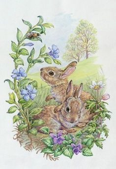 Two Rabbits with bee, violets, wood anemones Easter Illustration, Botanical Illustration, Easter Drawings, Animal Drawings, Bunny Painting, Easter Pictures, Decoupage Vintage, Bunny Art, Vintage Easter
