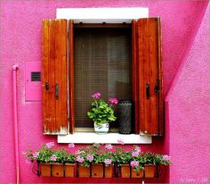 Pretty Pink Tulips had a wonderful post this. Living Colors, Flower Window, I Believe In Pink, Pink Houses, Dream Houses, Pink Tulips, Everything Pink, Window Boxes, Flower Boxes