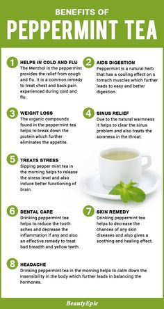 Peppermint is an herbal tea which is infused with peppermint and is sometimes made out of mint tea. Here we list some important benefits of peppermint tea. Cucumber Benefits, Coconut Health Benefits, Health Benefits Of Tea, Weight Loss Tea, Salud Natural, Natural Herbs, Natural Health, Peppermint Tea Benefits, Benefits Of Mint Tea
