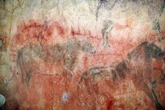 These horses in Tito Bustillo Cave in Spain are painted over older red art that might date back more than 29,000 years.