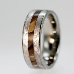 Petrified Wood and Gibeon Meteorite inlaid on a Titanium Ring - Engraving Available