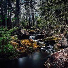 from @seandmcmullen  Golden Brook Falls . . #imagesofcanada #explorecanada #canada #igers #novascotia #visitnovascotia #forest #landscape #trees #river #waterfall #picoftheday #canon #nofilter
