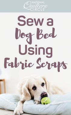 Whether you are new to quilting or you've been doing it for years, you've probably already started accumulating fabric scraps. While many of the larger scraps can be used in future quilting projects, some might be either too small or just not a fabric you want to use again. Kelly Hanson shows you how to make a dog bed quickly and easily using the scraps you may have otherwise thrown away.