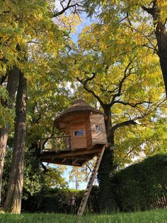 #treehouse#green#garden# #beauty