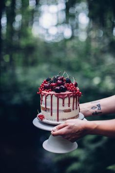 Gluten-free Cherry-Cardamom Cake & a Gathering in the Woods