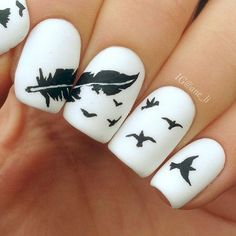 Feather and Birds on White Matte Nails.