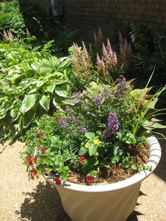 Discover St. Mark: Container Gardens