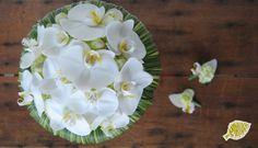 ramo novia y prendidos orquidea Orchid bridal bouquet