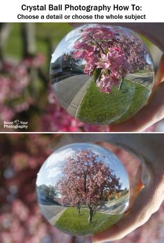 Crystal Ball Photography How To Boost Your PhotographyChoose a detail or choose the whole subject. Reflection Photography, Photography Camera, Abstract Photography, Artistic Photography, Creative Photography, Digital Photography, Photography Tips For Beginners, Photography Lessons, Photography Projects