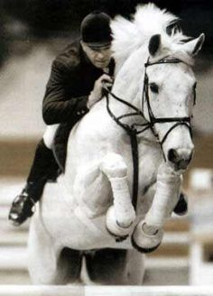 a horse that loved the sport as much if not more than his rider  - Milton