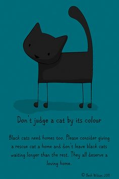 Black Cat Awareness Day by Beth Wilson--she has lots of cool cat doodles and an etsy shop too! Neat-o!