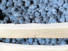 skladování švestek Blueberry, Fruit, Food, Berry, Essen, Meals, Yemek, Blueberries, Eten