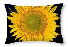 Sunflower At Night Throw Pillow by Becca Buecher