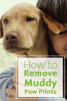 If you ever spend time hiking with your dogs, you know that they can't resist a good splash in a mud puddle. But muddy paw prints on the rugs at home after their adventures can be a nightmare. Luckily, the prints are easy to clean with Bounty Paper Towels and a little elbow grease.