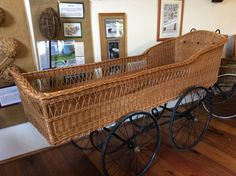 Willow Spinal Carriage