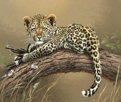 Baby Leopard with a kill - Animal Paintings by Fabrizio Caforio