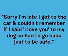 If you cant understand that you cant be in my life. - Funny Dog Quotes - If you cant understand that you cant be in my life. The post If you cant understand that you cant be in my life. appeared first on Gag Dad. Australian Shepherd Husky, Dog Quotes Funny, Funny Dogs, Dog Sayings, Dog Quotes Love, Funny Sayings, Yorkies, Maltipoo, Pekingese