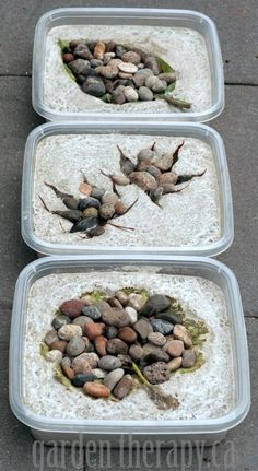 How to Make Leaf Imprint Stepping Stones Made from Concrete via Garden Therapy FIRE GARDEN DECORATION Cement can seem like quite an uninspiring medium so you might be su.