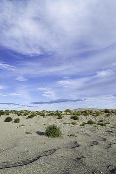 sand patterns desert landscape photography
