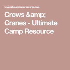 Crows & Cranes - Ultimate Camp Resource