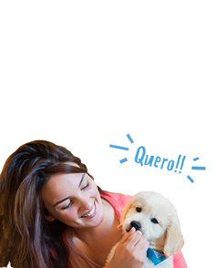 Loja online de produtos para animais de estimação. Alimentação e acessórios para cães, gatos, répteis, tartarugas, pássaros, roedores, peixes e furões.